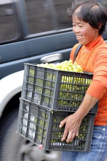 Крестьяне растаскивают виноград из перевернувшейся фуры. Август, 2012 год. Фото: «Ланчжоу монинг»