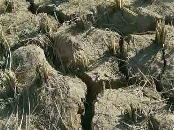 В провинции Юньнань от засухи пострадали миллионы человек. Фото с epochtimes.com