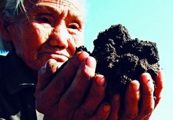 В Китае почва загрязнена тяжёлыми металлами. Фото с epochtimes.com