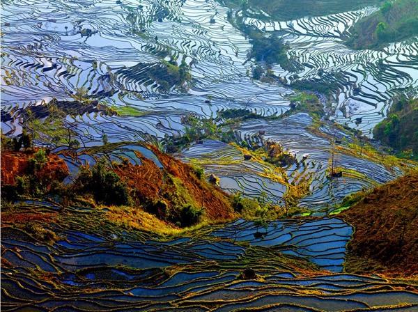Террасные поля. Провинция Юньнань. Фото: nipic.com
