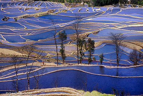 Террасные поля. Провинция Юньнань. Фото: chinataiwan.org