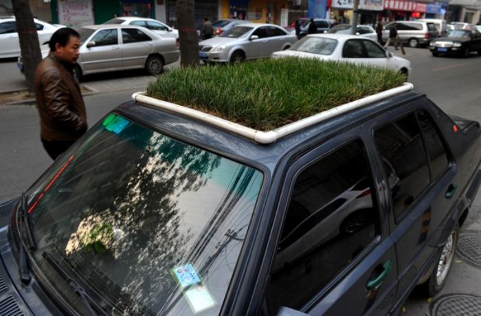 30 ноября 2012 г. в 16.00 часов автомобиль, припаркованный на улице Сыфу в городе Сиань на северо-западе Китая, привлёк большое внимание прохожих своей креативной крышей с газоном. Фото: epochtimes.com