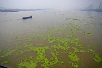 В Китае сильно загрязнены более 90% рек и озёр. Фото с epochtimes.com