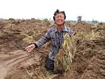 Китаю становится всё сложнее себя прокормить. Фото с epochtimes.com