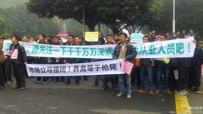 Протест птицеводов. Провинция Гуандун. Февраль 2014 года. Фото с epochtimes.com