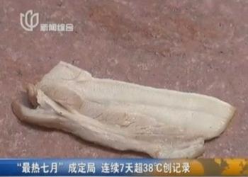 Журналист шанхайского телеканала поджарил на гранитном покрытии свиную грудинку. Июль 2013 года. Фото с epochtimes.com
