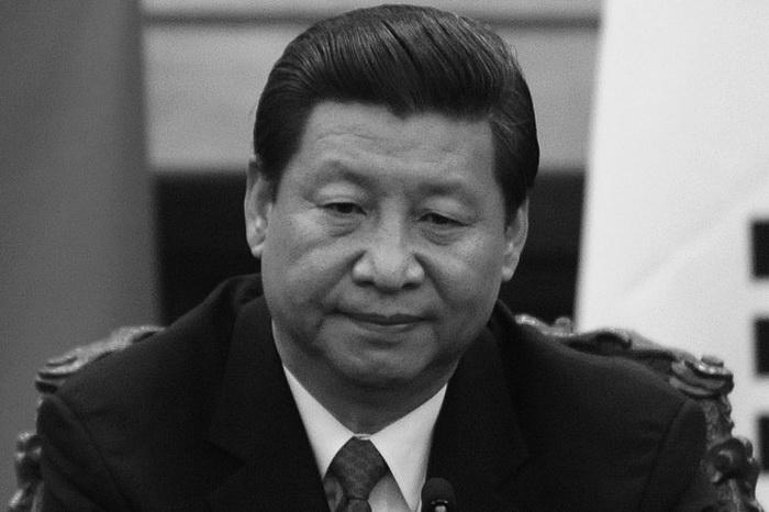 Генеральный секретарь компартии Китая Си Цзиньпин в Большом зале народных собраний, Пекин, 27 июня 2013 года. Фото: Wang Zhao/AFP/Getty Images