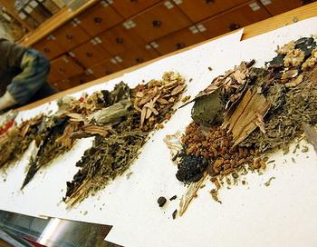 Акупунктура и китайские травы могут помочь от многих негативных симптомов менопаузы. Фото: snowpea&bokchoi/flickr.com