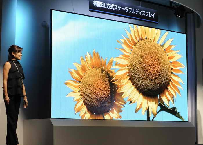 Применение органических светоизлучающих диодов. Фото: YOSHIKAZU TSUNO/AFP/Getty Images