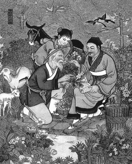 Травники передают знаменитому китайскому врачу Ли Шичжэну знания о местных лекарственных растениях. Созданный Ли Шичжэном чай «Восемь сокровищ» стал очень популярным в Китае. Китайская открытка из Тяньцзиня, 1988 г.