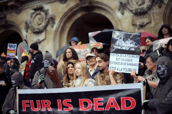 Две жизни Брижит Бардо. Протестующие против использования шкур животных во время демонстрации, организованной Фондом Брижит Бардо. Фото: LIONEL BONAVENTURE/AFP/Getty Images