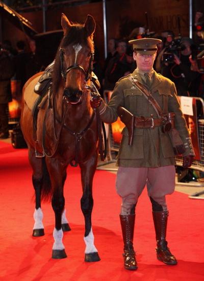 «Боевой конь». Исполнитель главной роли — конь Джои на премьере фильма «Боевой конь» в Лондоне. Фото: Tim Whitby/Getty Images