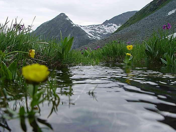 Горный Алтай. Фото: Евгений Жулин