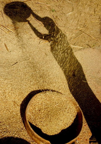Фото: Daniel Berehulak/Getty Images