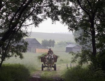 Деревня. Фото: ALEXEY GROMOV/AFP/Getty Images