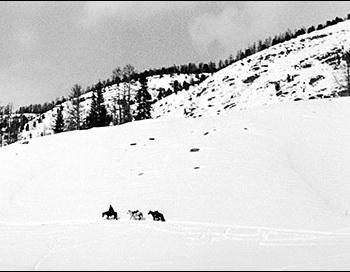 К перевалу. 1960  г. Фото: Дмитрий Житенёв