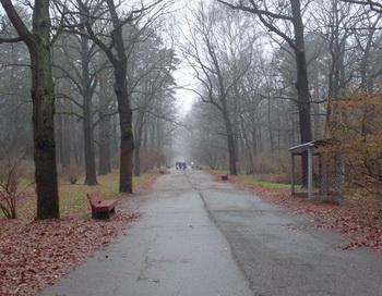 Поздняя осень. Фото: Екатерина Кравцова/Великая Эпоха