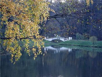 Осень. Фото: Екатерина Кравцова/Великая Эпоха