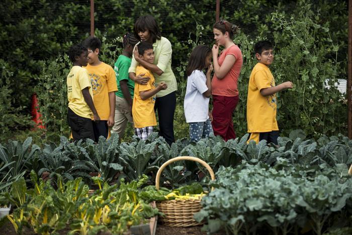 статья о здоровом образе жизни дошкольников