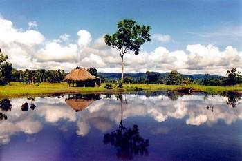 Коста-Рика - зеленый рай. Фото с alcoexpert.ru