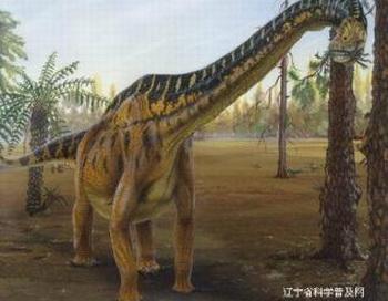 Иллюстрация предоставлена научной сетью Ляонина. Фото: http://en.kanzhongguo.com