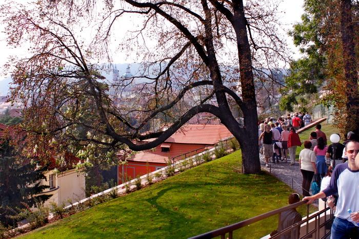 Природа Чехии самобытна и привлекательна. Фото: Ирина Рудская/Великая Эпоха (The Epoch Times)