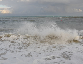 О море. Фото: Николай Богатырев