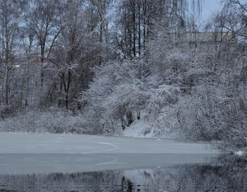 Декабрь. Фото: Николай Богатырёв