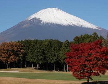 Фото: Koichi Kamoshida/Getty Images