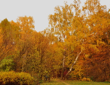 Пейзаж. Фото: Николай Богатырев