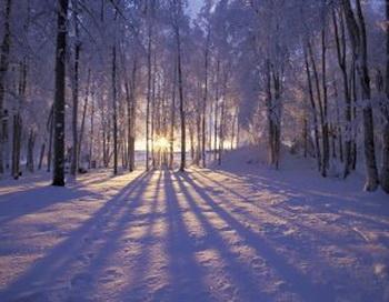 Сиреневый вечер. Фото с сайта literateknits.wordpress.com