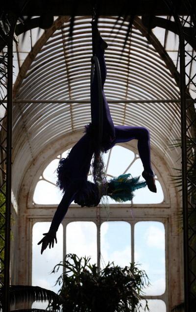 Фоторепортаж о воздушных акробатах в садах Кью в Лондоне. Фото: Peter Macdiarmid/Getty Images