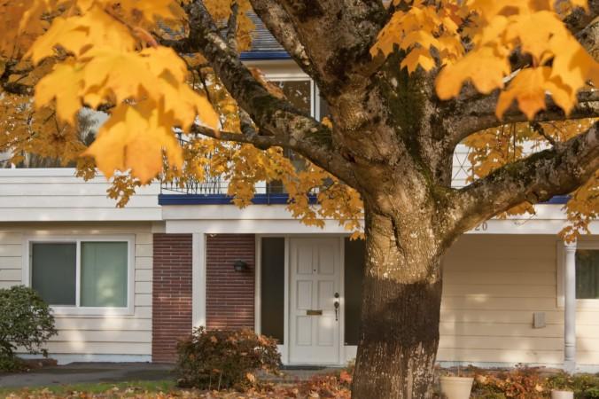 Наступило время подготовить ваш дом к осени и зиме. Фото: Aleksan Ghojoyan/Photos.com