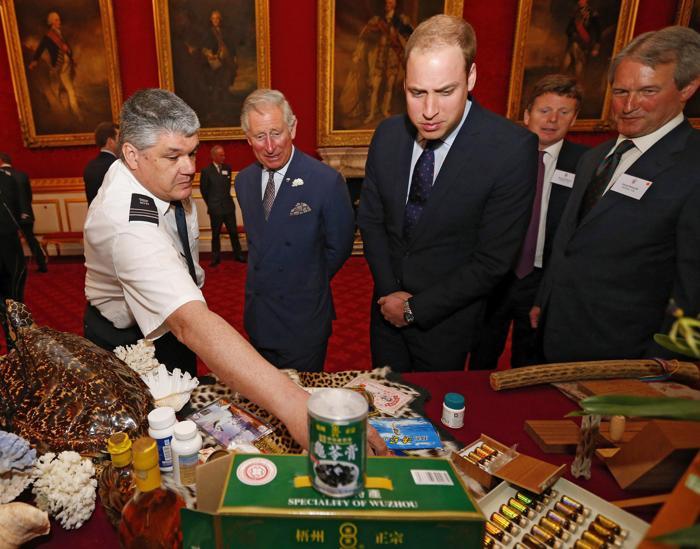 Принц Чарльз и принц Уильям поддержали редких животных. Фото: Andrew Winning - WPA Pool/Getty Images