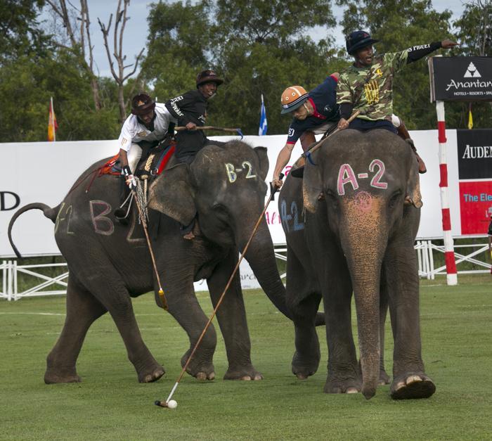 Первый день благотворительного Королевского кубка по поло на слонах прошёл в Таиланде, на курорте Хуа-Хин, 30 августа 2013 года. Фото: Paula Bronstein/Getty Images