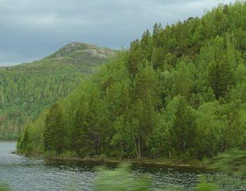 Норвегия. Фото РИА Новости