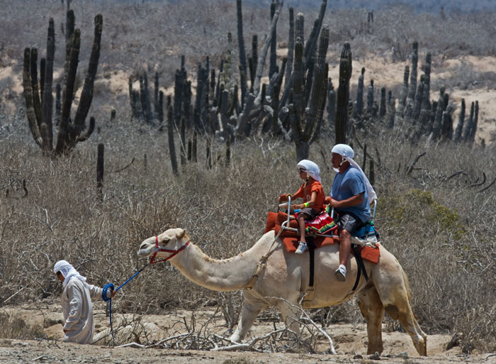 Приключенческий туризм – это туры, цель которых посетить природные парки, заповедники, скрытые от туристов, водные источники, озера и другие... Фото: PAUL J. RICHARDS/AFP/GettyImages