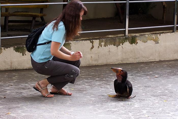 Чудесное знакомство в Куала-Лумпурском Парке птиц. Фото:  Екатерина Кравцова/Великая Эпоха (The Epoch Times)