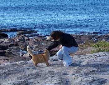 Кот и море. Фото из семейного альбома автора