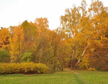Осень. Фото: Екатерина Кравцова/Великая Эпоха (The Epoch Times)