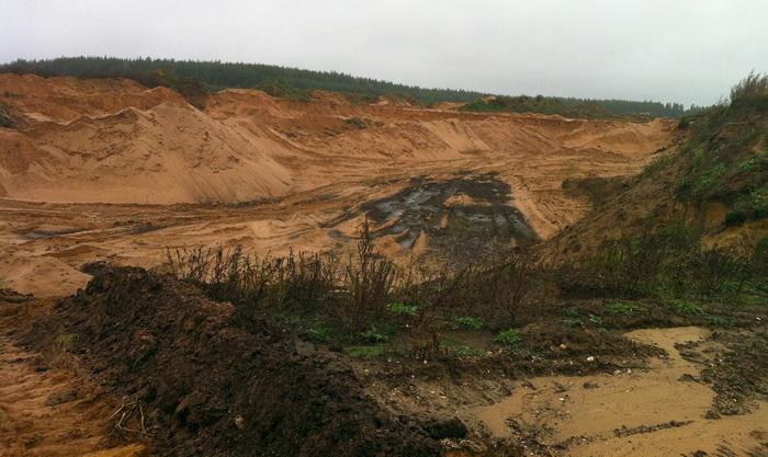 Фото предоставлено пресс-службой МОО «Зелёный Фронт»