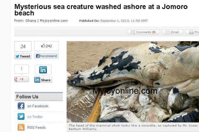 Таинственное морское существо с головой, похожей на крокодилью, и хвостом, похожим на хвост кита. Фото: My Joy Online