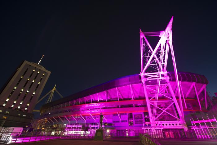 Стадион в городе Кардиффе стал подсвечиваться 23 октября 2013 года розовым цветом в рамках кампании по предотвращению рака молочной железы. Фото: Matthew Horwood/Getty Images for Breast Cancer Campaign