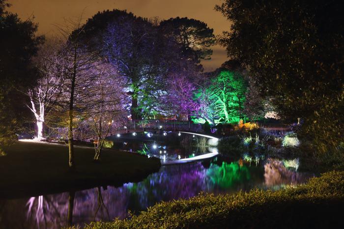 Лондонский Сион-парк в течение нескольких недель вечерами будет освещаться яркими цветами, создавая атмосферу «Лесного очарования» в садах, дендрарии, оранжерее и доме Генриха Нортумберлендского. Фото: Oli Scarff/Getty Images
