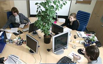 Брендинговое агентство выполняет работу «с нуля». Фото: soldis.ru