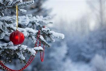 Аномальные морозы в Сибири. Фото: Getty Images