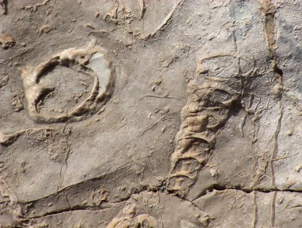На раскопках новой пещеры. Фото с сайта astrotourist.info