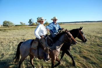 Ньюленд и его жена заводят свое стадо с пастбищ в огороженное стойло. Фото предоставлено Мириам Моран