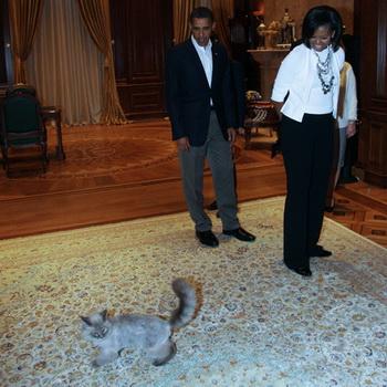 6 июля 2009 года. Президент США Барак Обама с супругой Мишель в подмосковной резиденции российского президента «Горки» и кот Дорофей. Фото РИА Новости