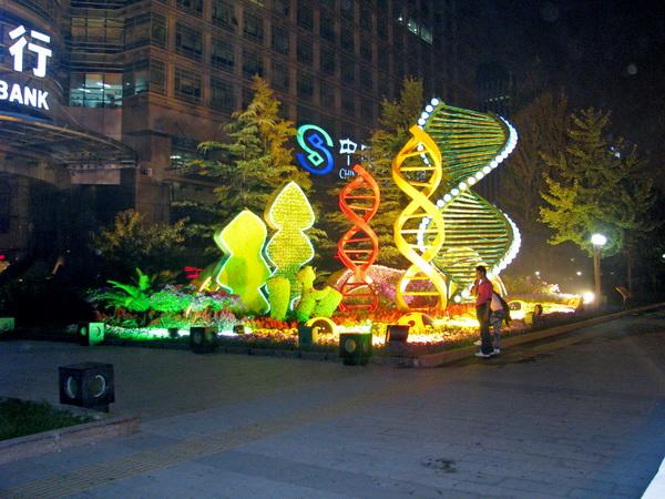 Перекресток с ДНК. Фото: Ольга Судникович/Великая Эпоха (The Epoch Times)